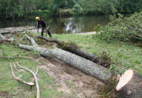 Lancement de la troisième phase de restauration de la végétation des berges sur la Gartempe