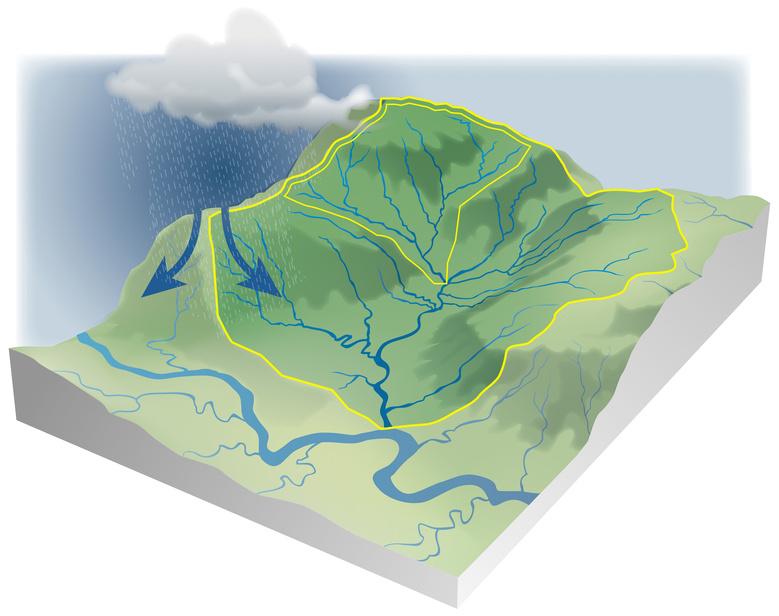 Le bassin versant