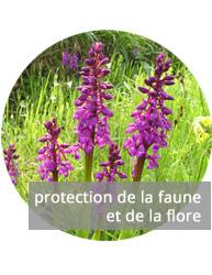 Protection de la Faune et Flore
