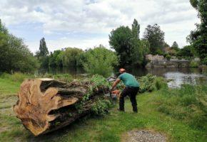 Début des travaux d'urgence sur la végétation de la Gartempe